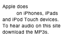 Apple does not support Flash on iPhones, iPads
